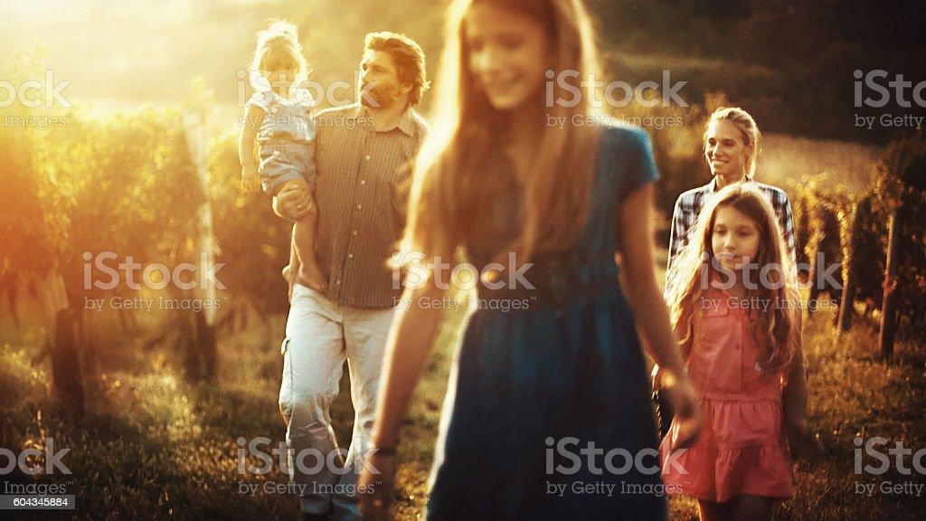 Family walking through a vineyard. stock photo