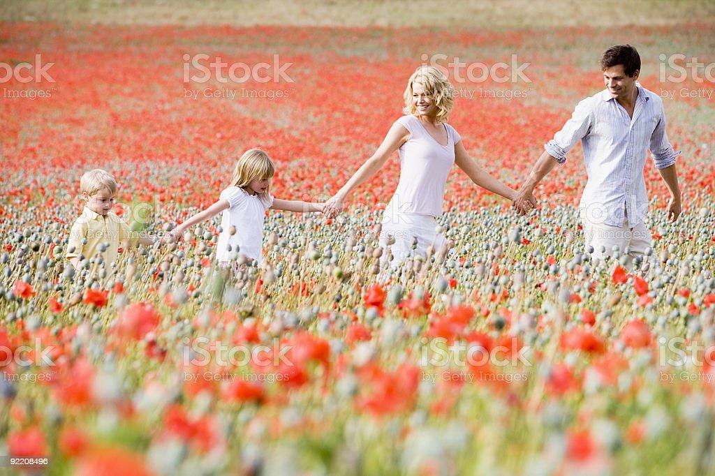 Family walking through poppy field royalty-free stock photo