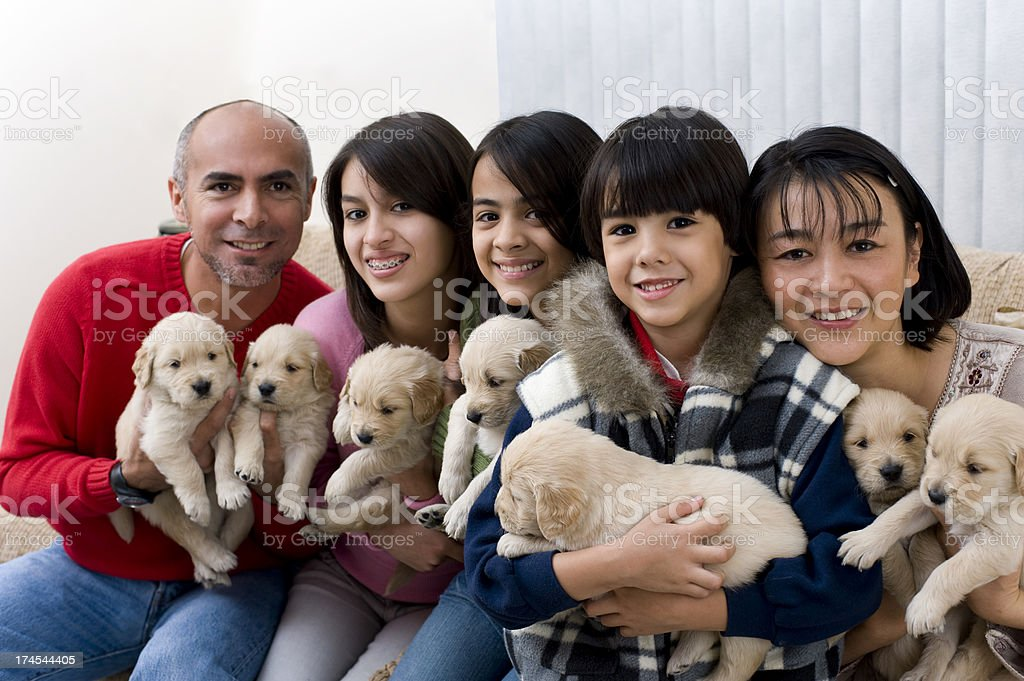 Family whit puppies royalty-free stock photo
