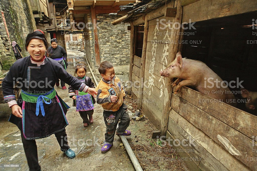 Family with children of Chinese farmers, stands near the pigsty. stock photo