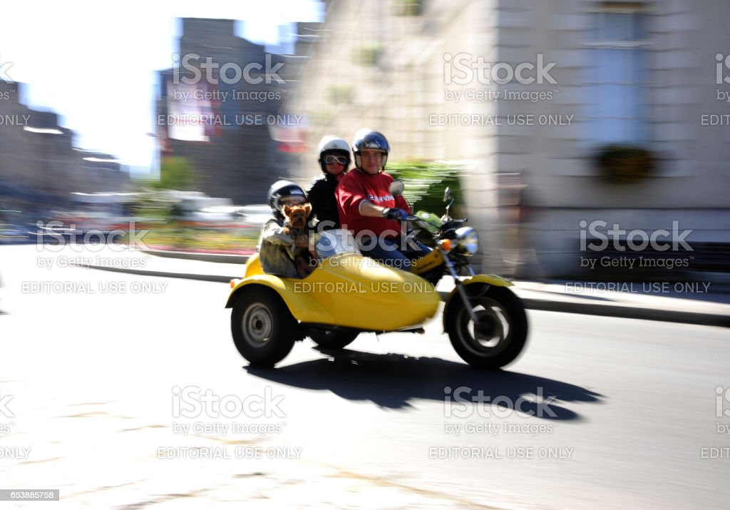 Family with dog on motorbike with sidecar in motion. stock photo