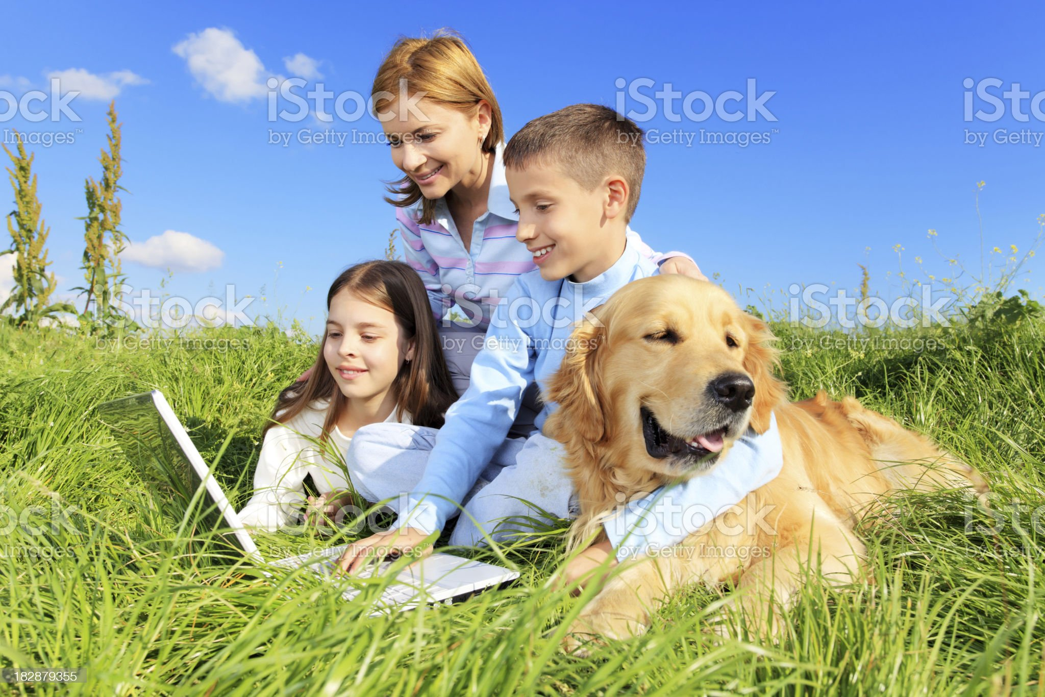 Family with dog resting on meadow, looking at laptop. royalty-free stock photo