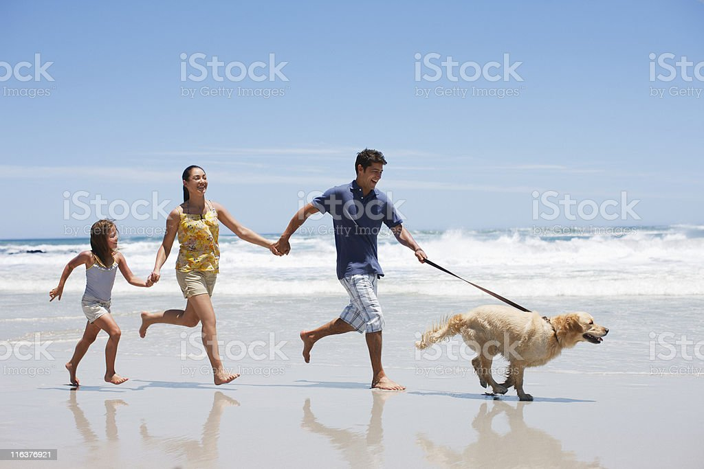Family with dog running on beach royalty-free stock photo