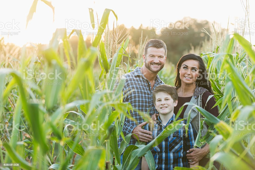 Family with teenage son on a farm in corn field stock photo