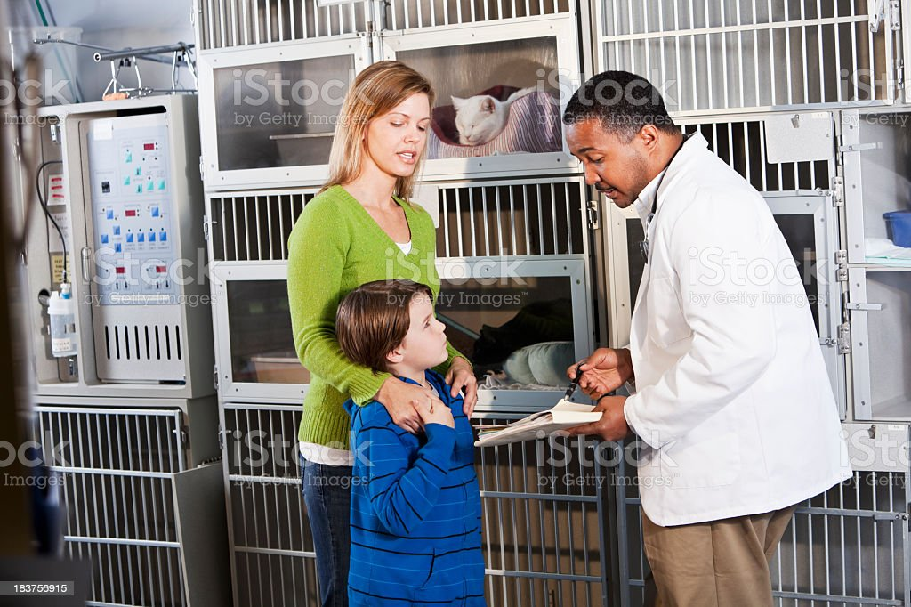 Family with vet in animal clinic stock photo