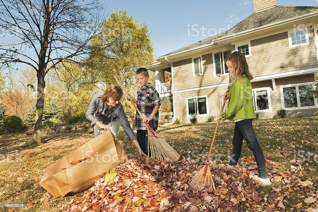 Family Working Together Raking Fall Leaves at Backyard of Home stock photo