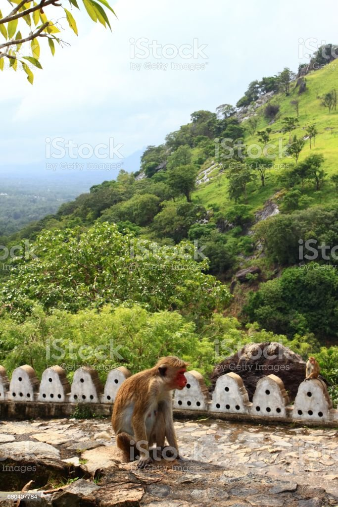 Famous Adams peak, picture taken from Cave temple  in Dambulla stock photo