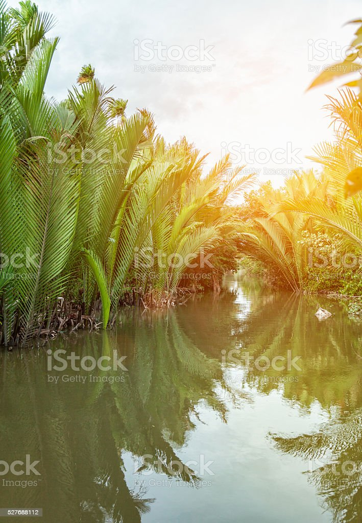 Famous destination on the Mekong delta in Vietnam stock photo