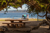 Famous sea lion cove with people standing by picnic area
