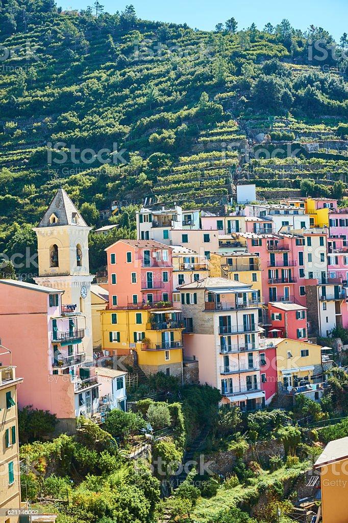Famous town of Manarola in Cinque Terre stock photo