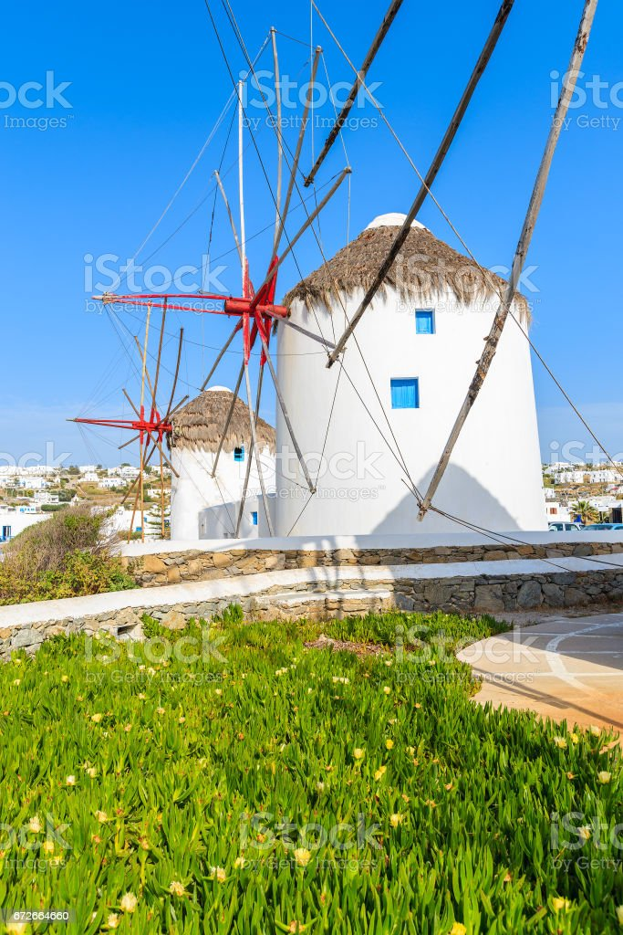 Famous traditional windmills on Mykonos island with flowers in foreground, Cyclades, Greece stock photo