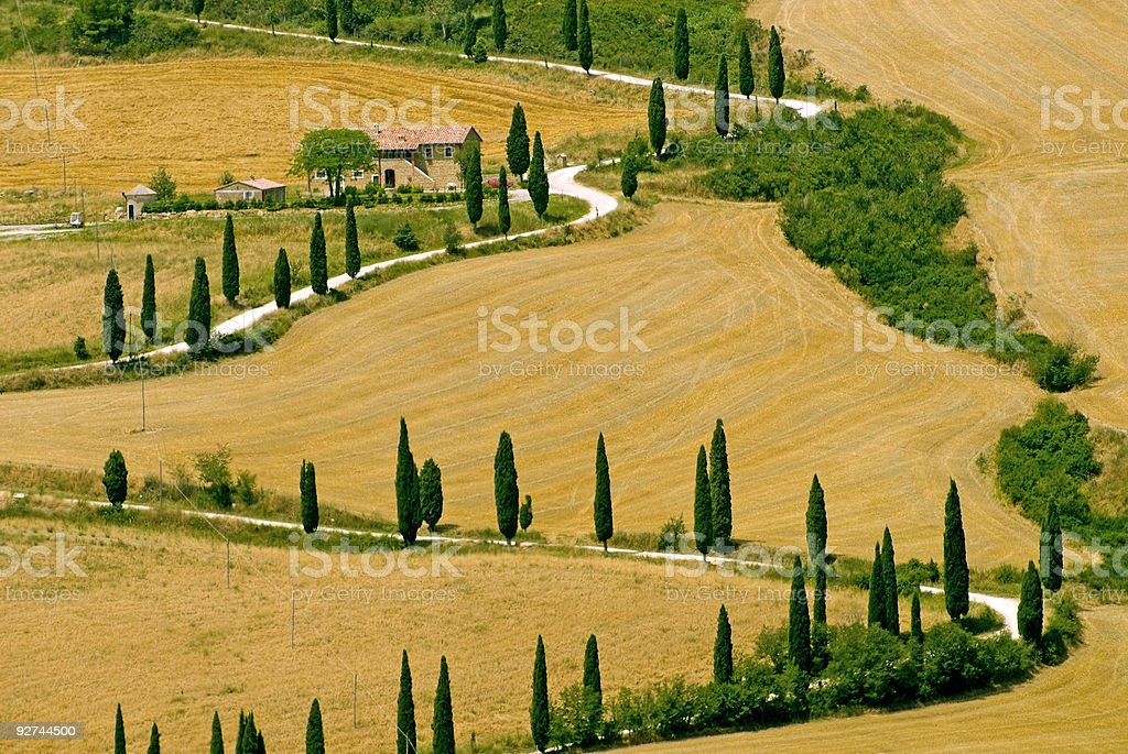 Famous winding road with cypresses in Tuscany stock photo
