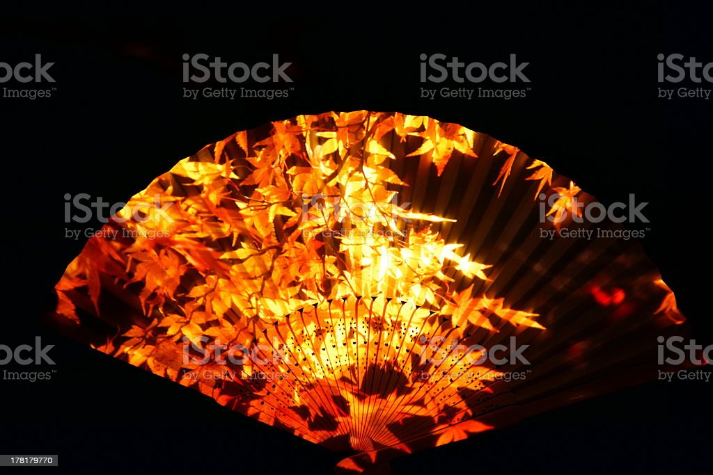Fan of autumn leaves royalty-free stock photo