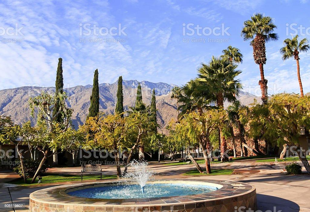 Fan Palms Trees Blue Fountain Palm Springs California stock photo