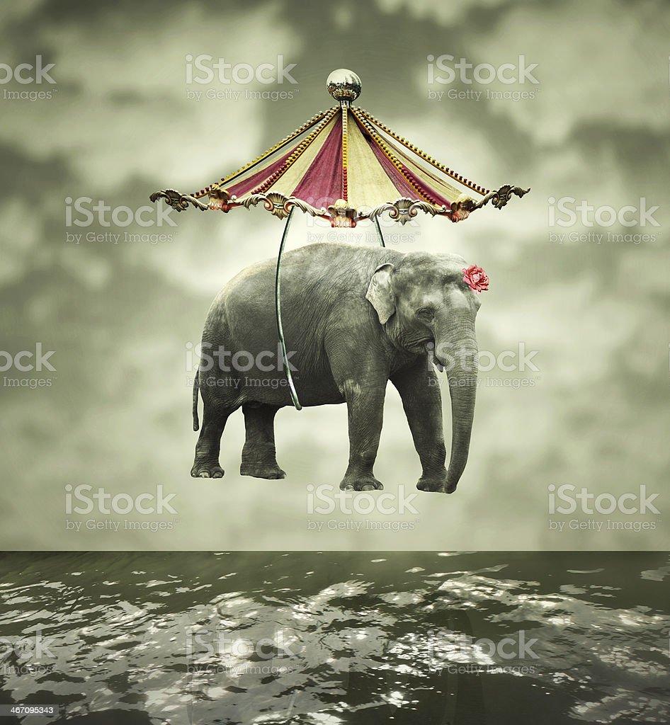 Fanciful elephant stock photo