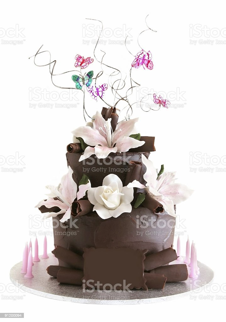 Fancy Chocolate Celebration Cake royalty-free stock photo