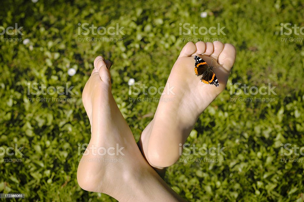 Fancy Feet royalty-free stock photo