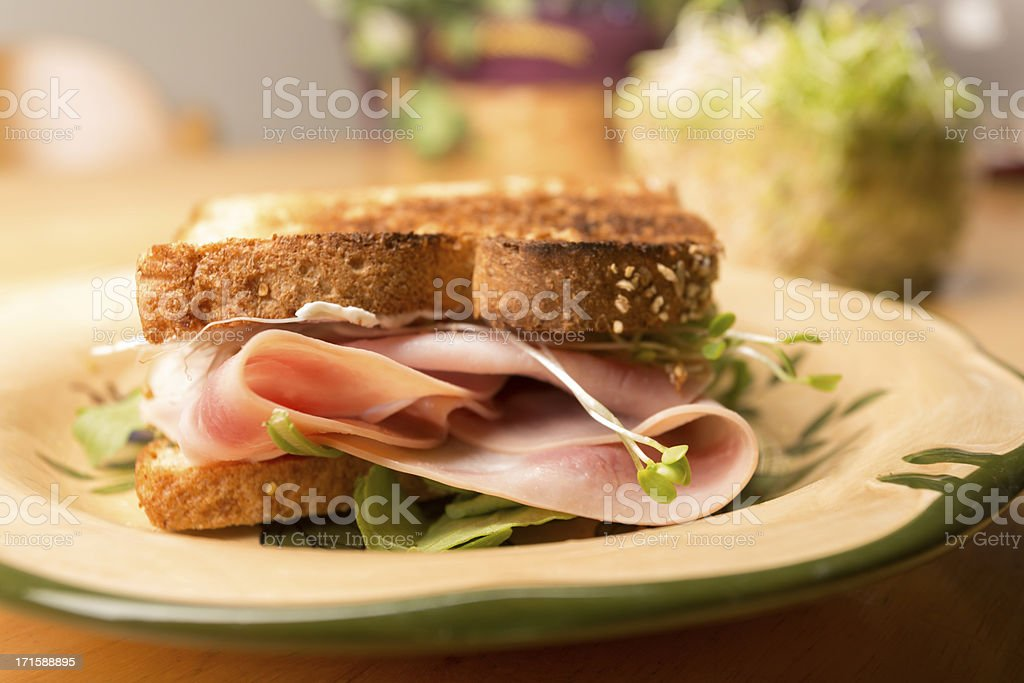 Fancy Ham Sandwich royalty-free stock photo