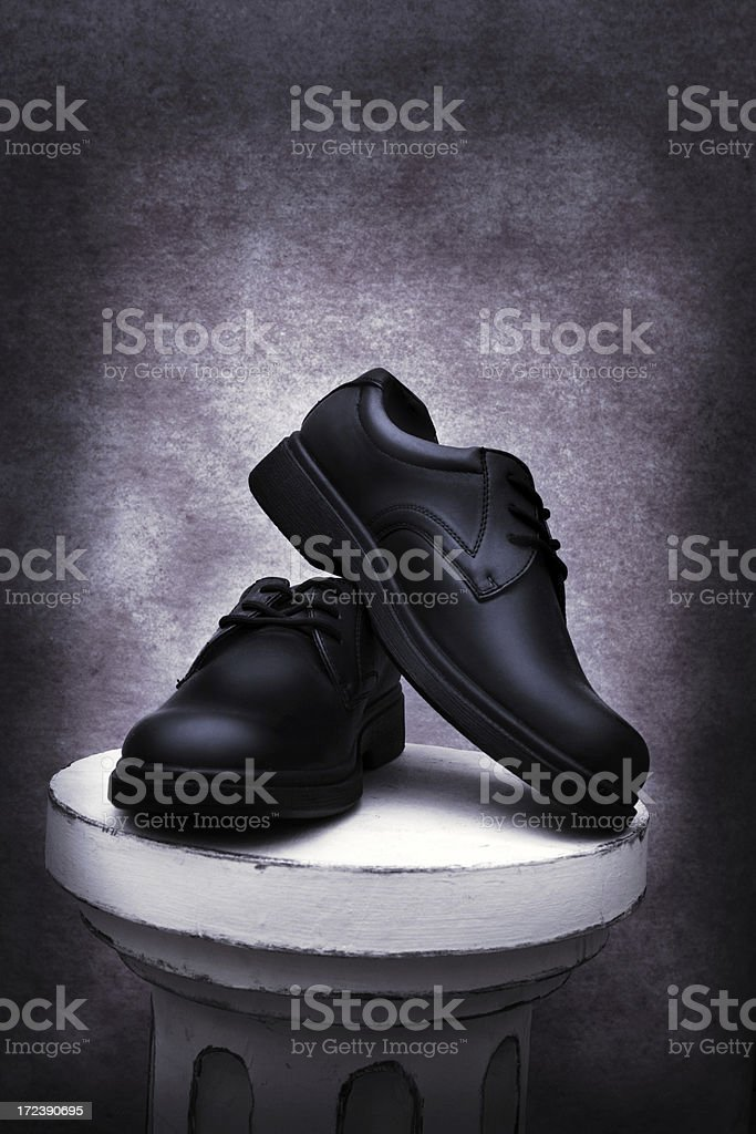 Fancy Shoes royalty-free stock photo