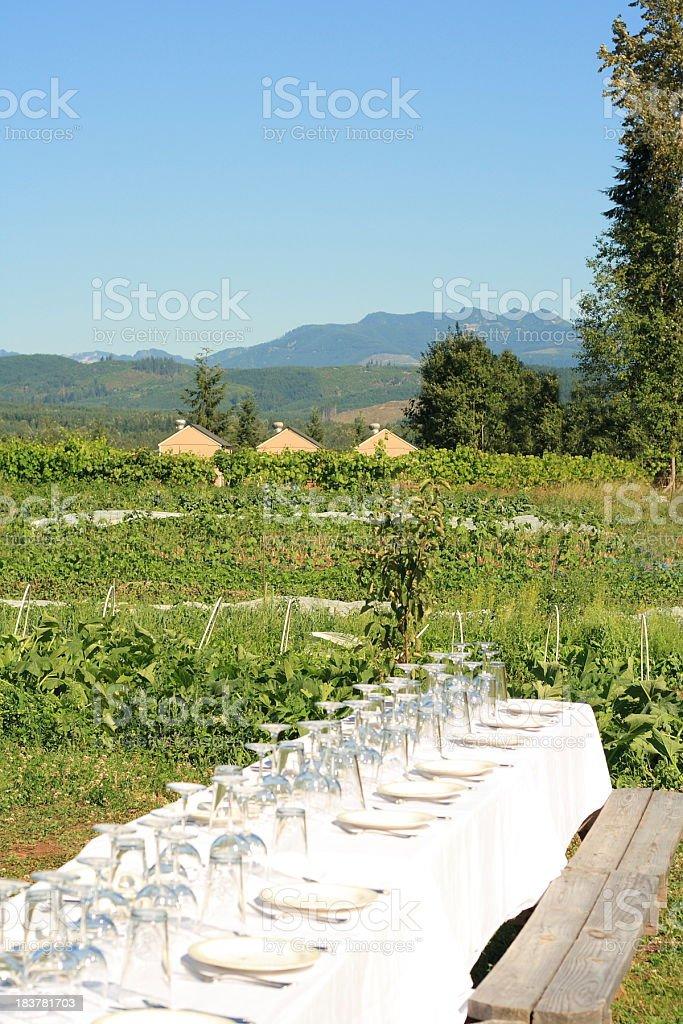 Fancy table setting near vegetable garden in rural mountain environment stock photo