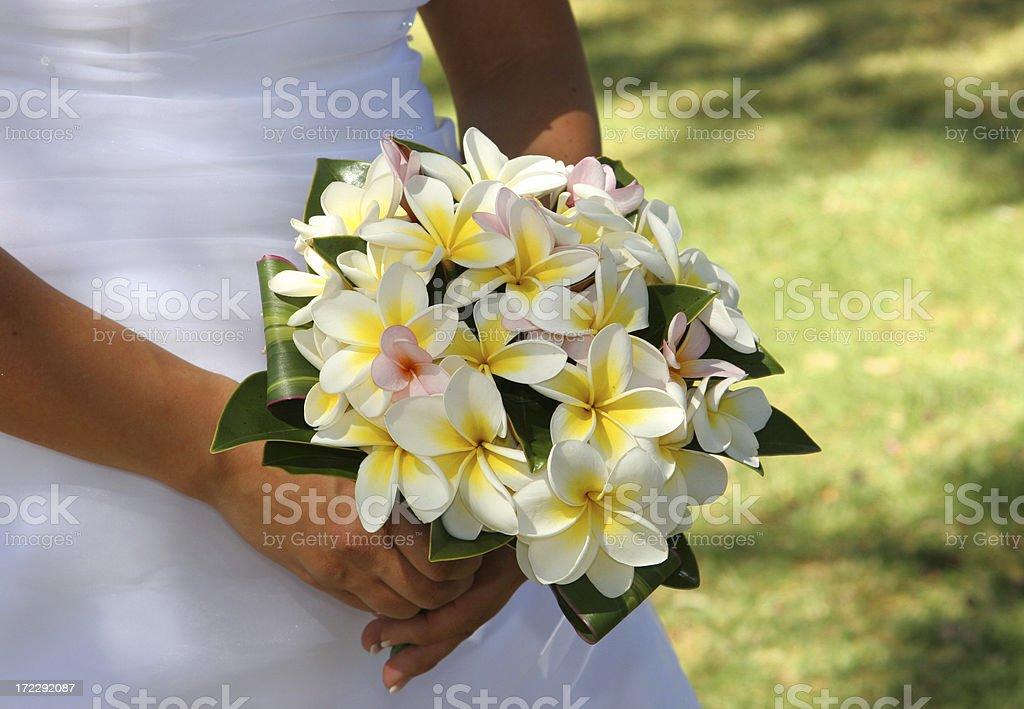 Fangipani Bouquet stock photo