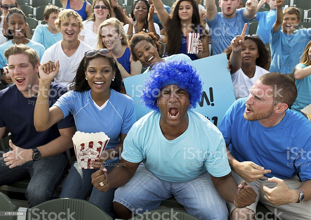 Fans at Sporting Event stock photo