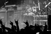 Les Fans de Rock