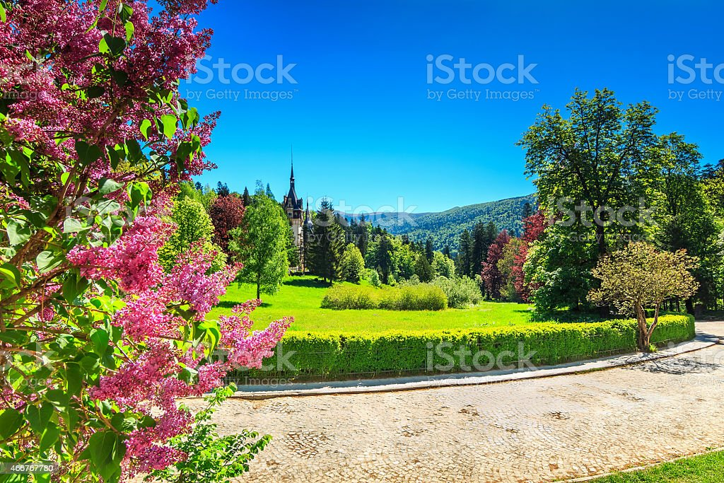Fantastic ornamental garden and palace,Peles castle,Sinaia,Romania,Europe stock photo