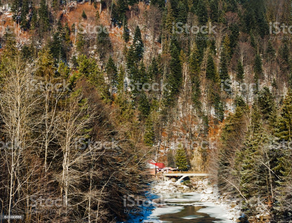 Fantastic view of winter fir mountain forest and little bridge stock photo