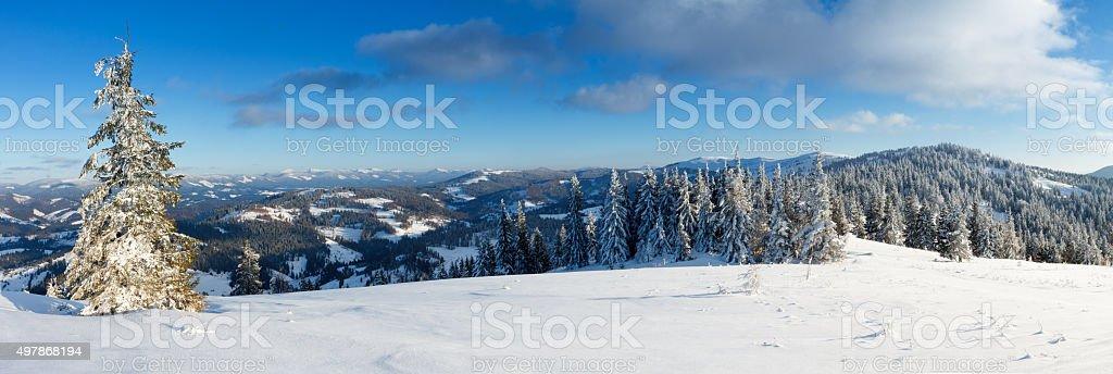 Fantastic winter landscape. Blue sky. Carpathian, Ukraine, Europe. Beauty world. stock photo