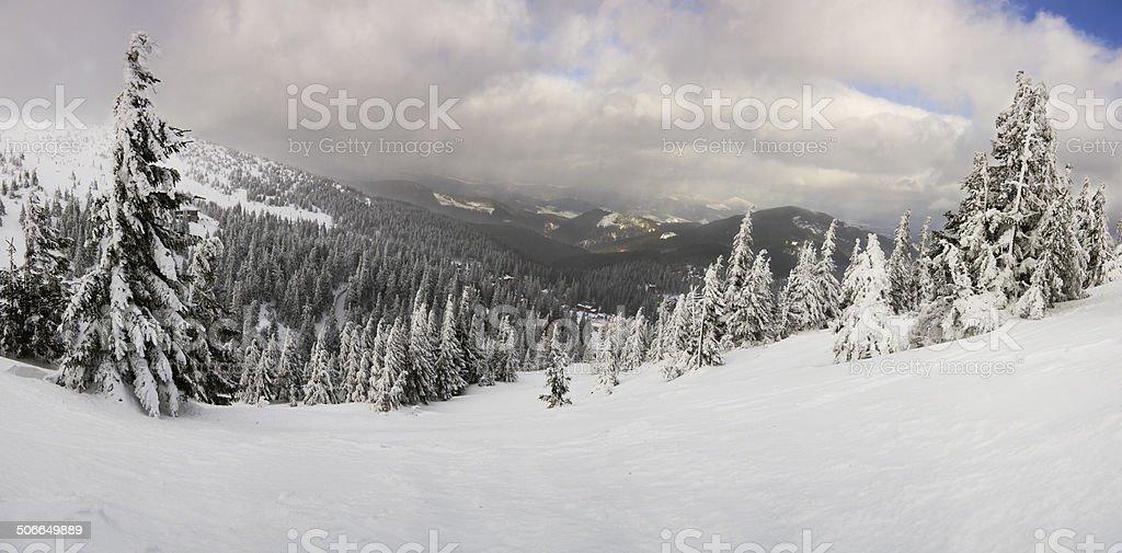 Fantástico paisaje de invierno.  Carpathian, Ucrania. foto de stock libre de derechos