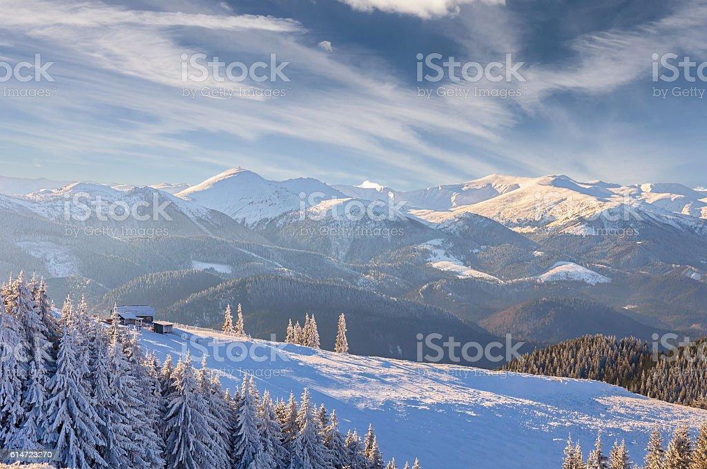 Fantastic winter landscape. Dramatic overcast sky. stock photo