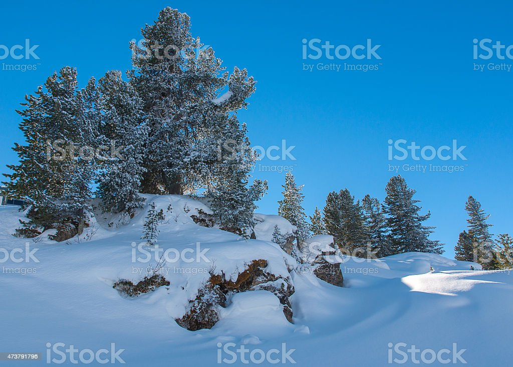 Fantastic Winter panorama of the Alps. stock photo