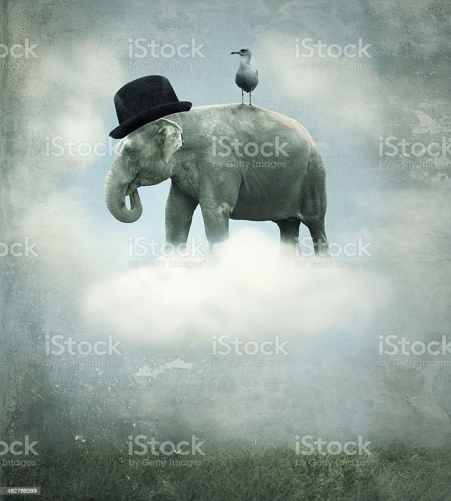Fantasy elephant flying stock photo