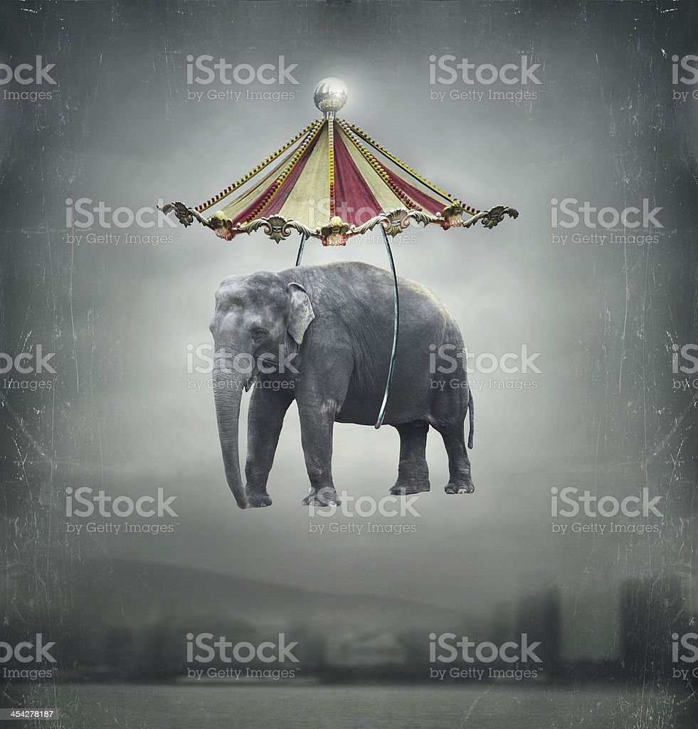 Fantasy elephant stock photo