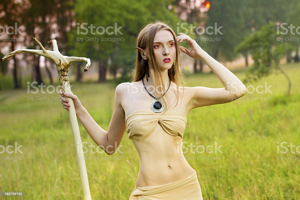 Fantasy elf in fores royalty-free stock photo