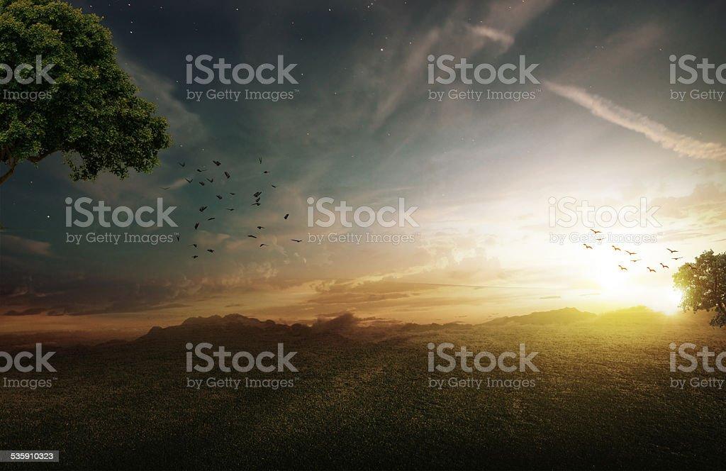 Fantasy field stock photo