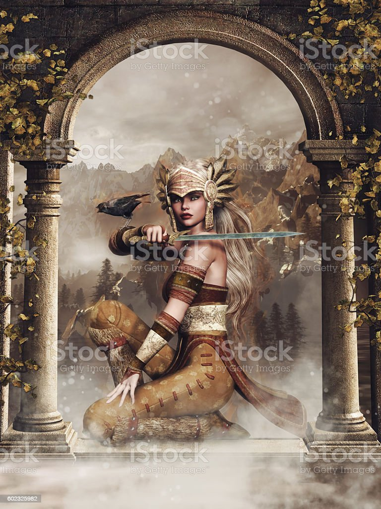Fantasy warrior girl with a raven stock photo
