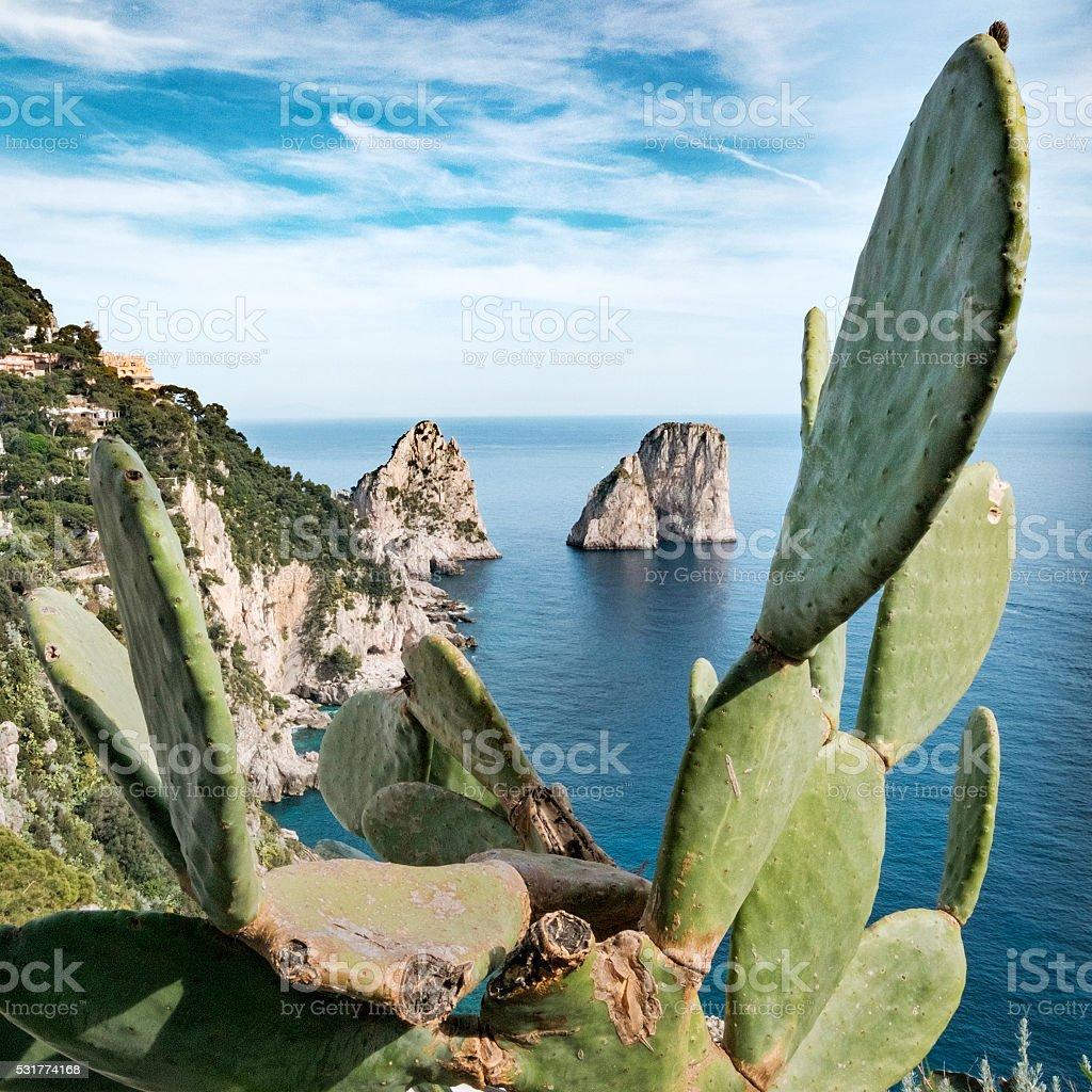 Faraglioni, Capri island, Italy stock photo