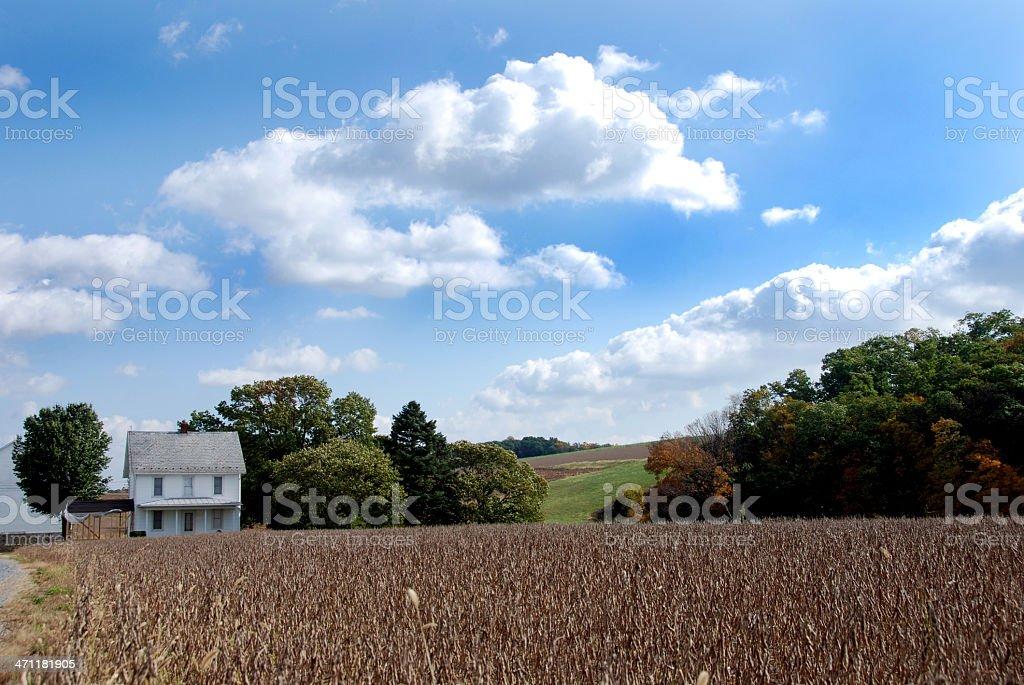 Farm & Field royalty-free stock photo