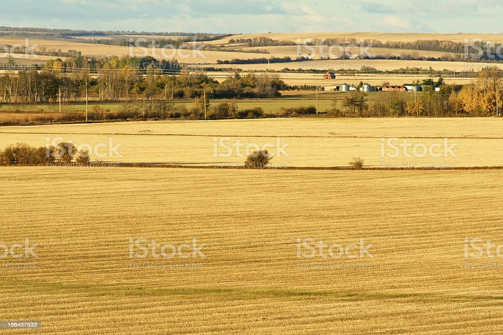 Farm and fields at sunrise royalty-free stock photo