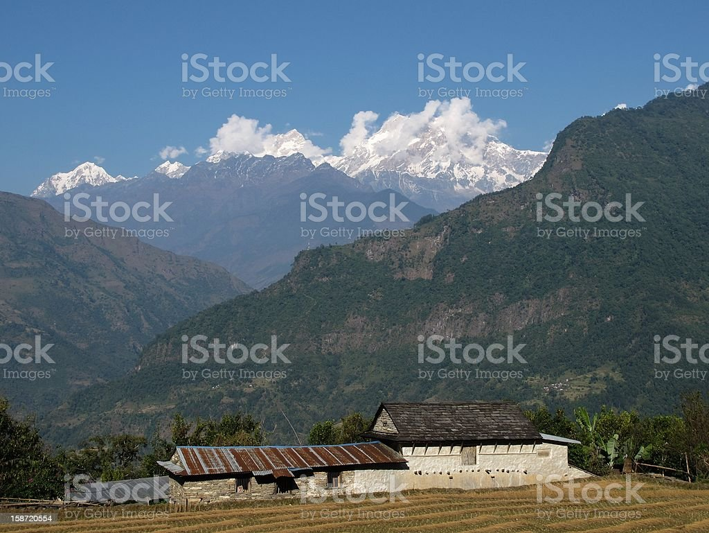 Farm And Manaslu royalty-free stock photo