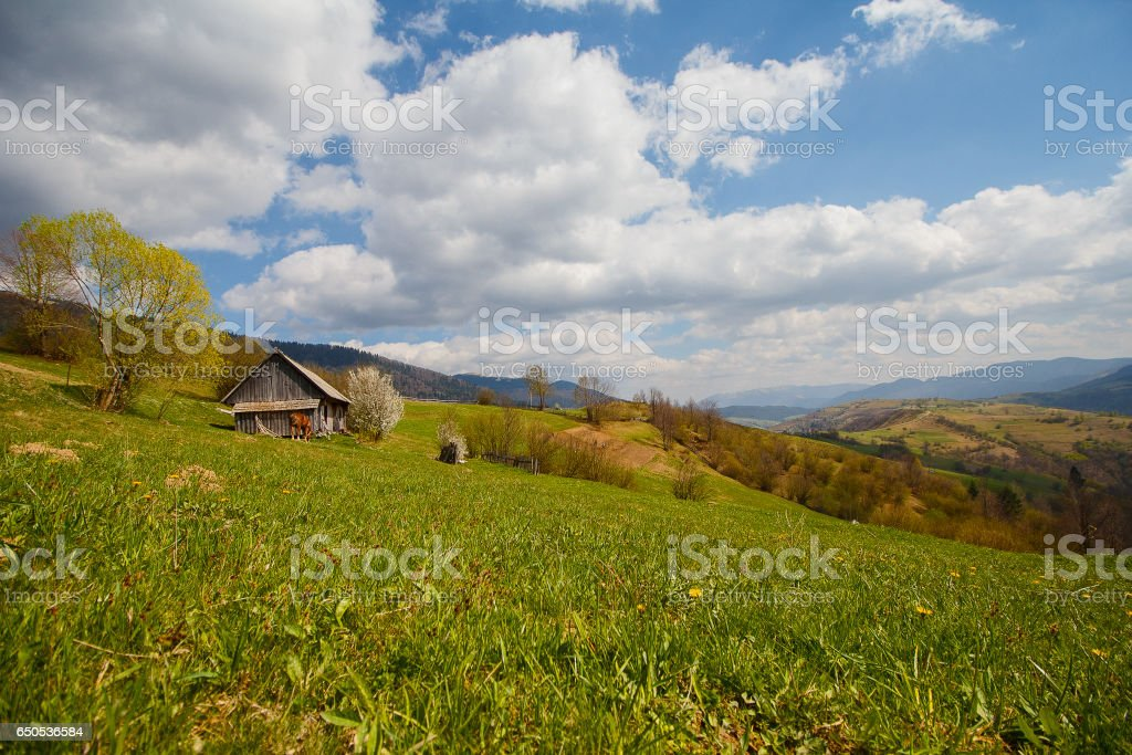 Farm and mountain panorama in early spring. Carpathians stock photo