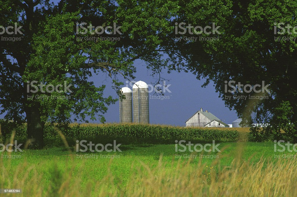 Farm and Silos royalty-free stock photo