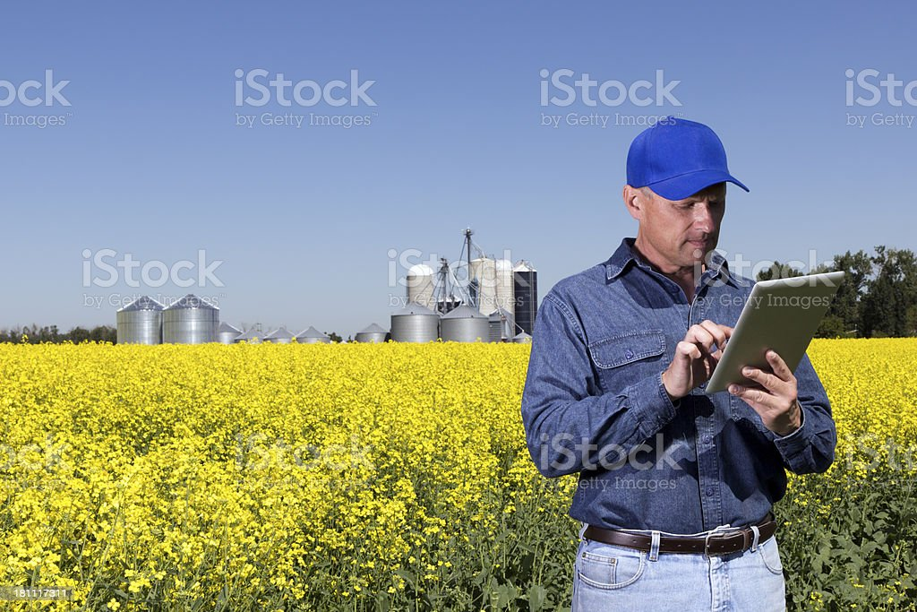 Farm and Tablet Computer royalty-free stock photo