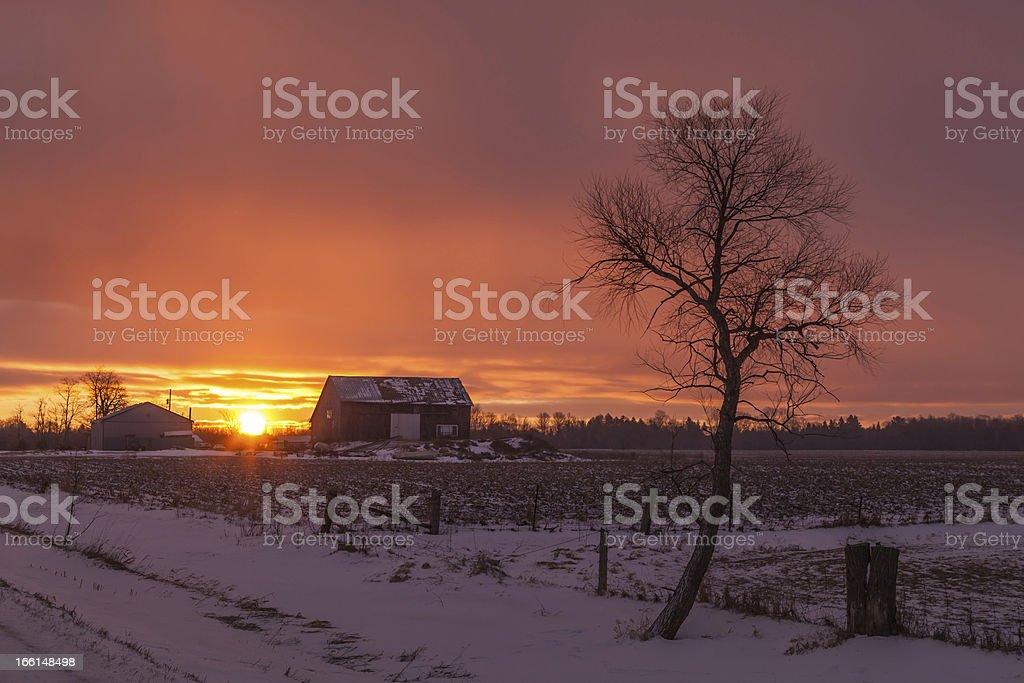 Farm at Dusk royalty-free stock photo