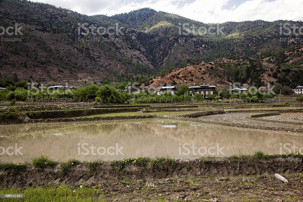 Farm at Paro Bhutan stock photo