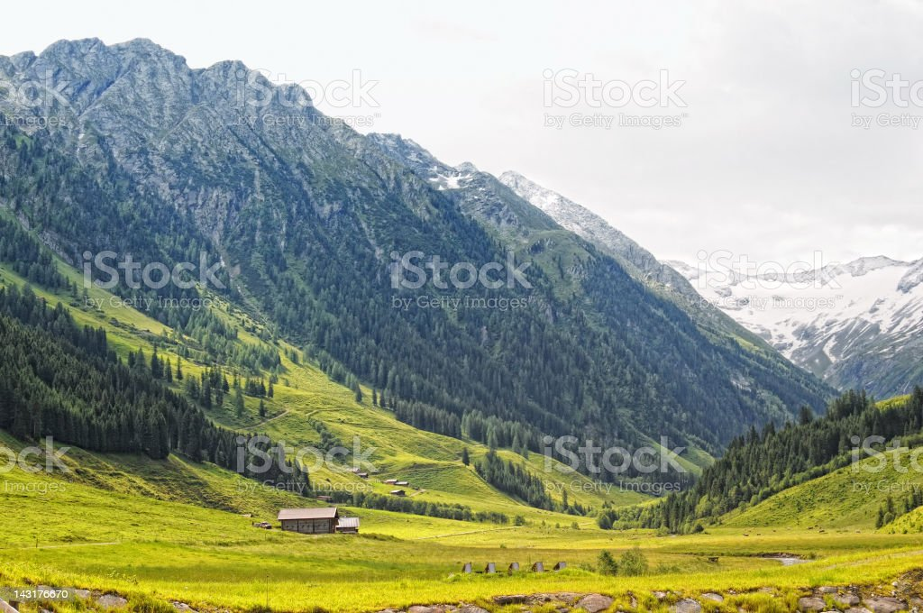 Farm at Schoenach valley in Tirol (European Alps Austria) royalty-free stock photo