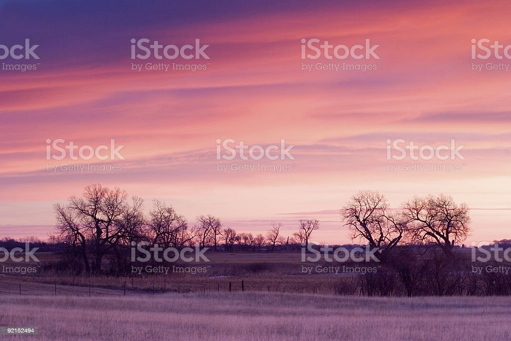 Farm Beauty royalty-free stock photo