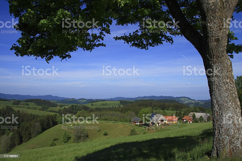 farm between hills royalty-free stock photo